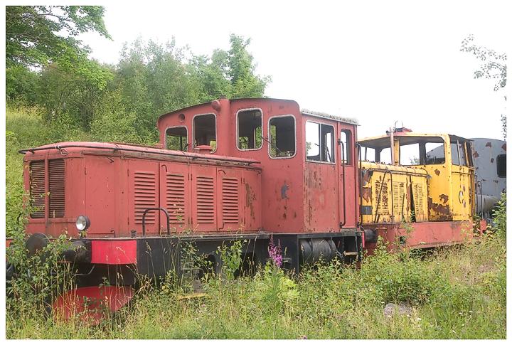 CRW_8706